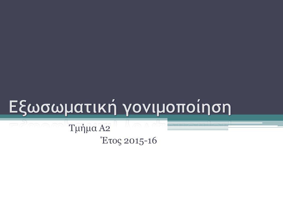 Τμήμα Α2 Έτος 2015-16