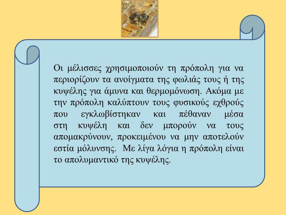 Οι μέλισσες χρησιμοποιούν τη πρόπολη για να περιορίζουν τα ανοίγματα της φωλιάς τους ή της κυψέλης για άμυνα και θερμομόνωση.