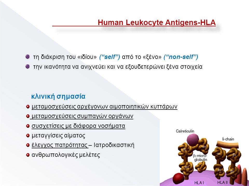 Human Leukocyte Antigens-HLA τη διάκριση του «ιδίου» ( self ) από το «ξένο» ( non-self ) την ικανότητα να ανιχνεύει και να εξουδετερώνει ξένα στοιχεία κλινική σημασία μεταμοσχεύσεις αρχέγονων αιμοποιητικών κυττάρων μεταμοσχεύσεις συμπαγών οργάνων συσχετίσεις με διάφορα νοσήματα μεταγγίσεις αίματος έλεγχος πατρότητας – Ιατροδικαστική ανθρωπολογικές μελέτες