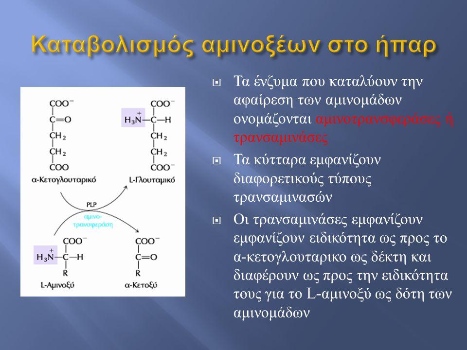  Τα ένζυμα που καταλύουν την αφαίρεση των αμινομάδων ονομάζονται αμινοτρανσφεράσες ή τρανσαμινάσες  Τα κύτταρα εμφανίζουν διαφορετικούς τύπους τρανσ