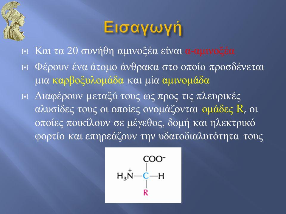 Και τα 20 συνήθη αμινοξέα είναι α - αμινοξέα  Φέρουν ένα άτομο άνθρακα στο οποίο προσδένεται μια καρβοξυλομάδα και μία αμινομάδα  Διαφέρουν μεταξύ