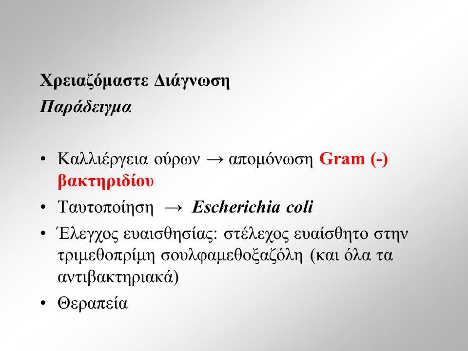 Χρειαζόμαστε Διάγνωση Παράδειγμα Καλλιέργεια ούρων → απομόνωση Gram (-) βακτηριδίου Ταυτοποίηση → Escherichia coli Έλεγχος ευαισθησίας: στέλεχος ευαίσθητο στην τριμεθοπρίμη σουλφαμεθοξαζόλη (και όλα τα αντιβακτηριακά) Θεραπεία