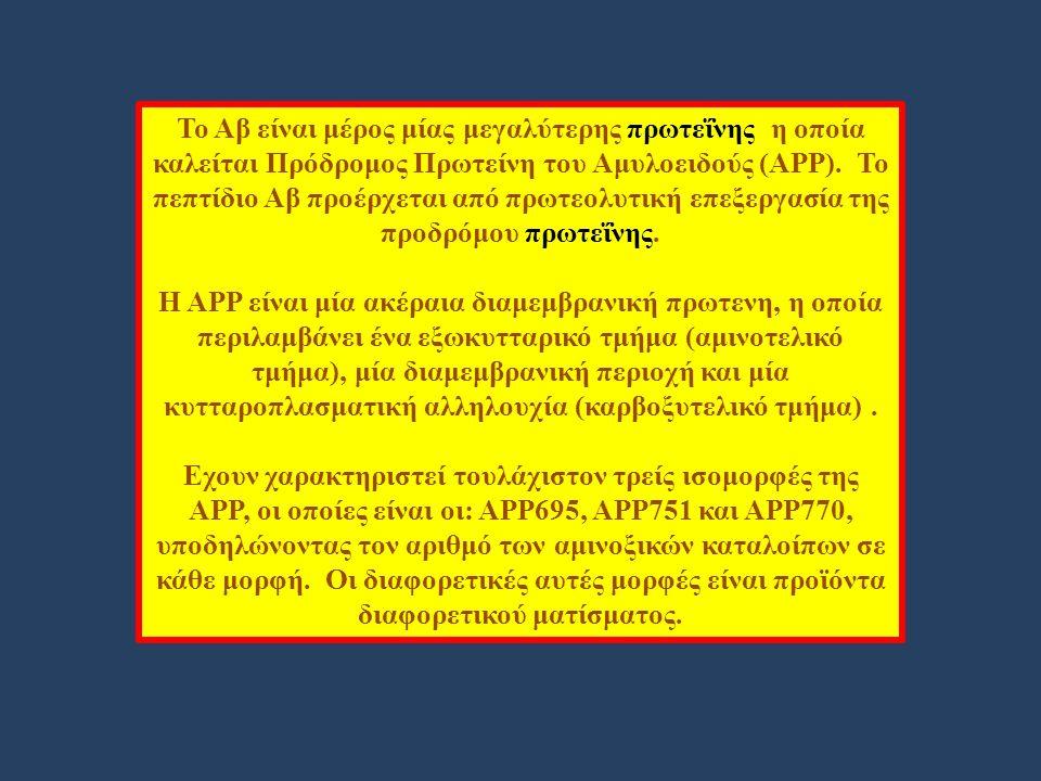 Το Αβ είναι μέρος μίας μεγαλύτερης πρωτεΐνης η οποία καλείται Πρόδρομος Πρωτείνη του Αμυλοειδούς (ΑΡΡ).