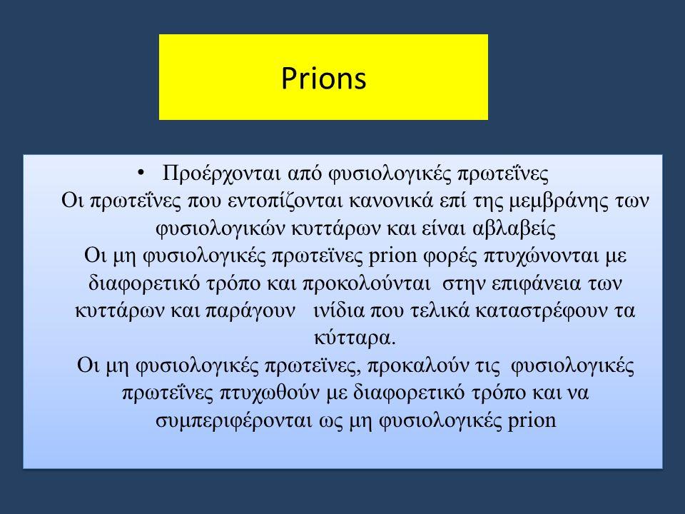 Prions Προέρχονται από φυσιολογικές πρωτεΐνες Οι πρωτεΐνες που εντοπίζονται κανονικά επί της μεμβράνης των φυσιολογικών κυττάρων και είναι αβλαβείς Οι μη φυσιολογικές πρωτεϊνες prion φορές πτυχώνονται με διαφορετικό τρόπο και προκολoύνται στην επιφάνεια των κυττάρων και παράγουν ινίδια που τελικά καταστρέφουν τα κύτταρα.