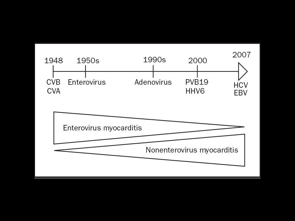 Μυοκαρδιακά ένζυμα Τα μυοκαρδιακά ένζυμα (CK, CK-MB, troponin I,T) μετρούνται ως ρουτίνα σε υποψία μυοκαρδίτιδος.