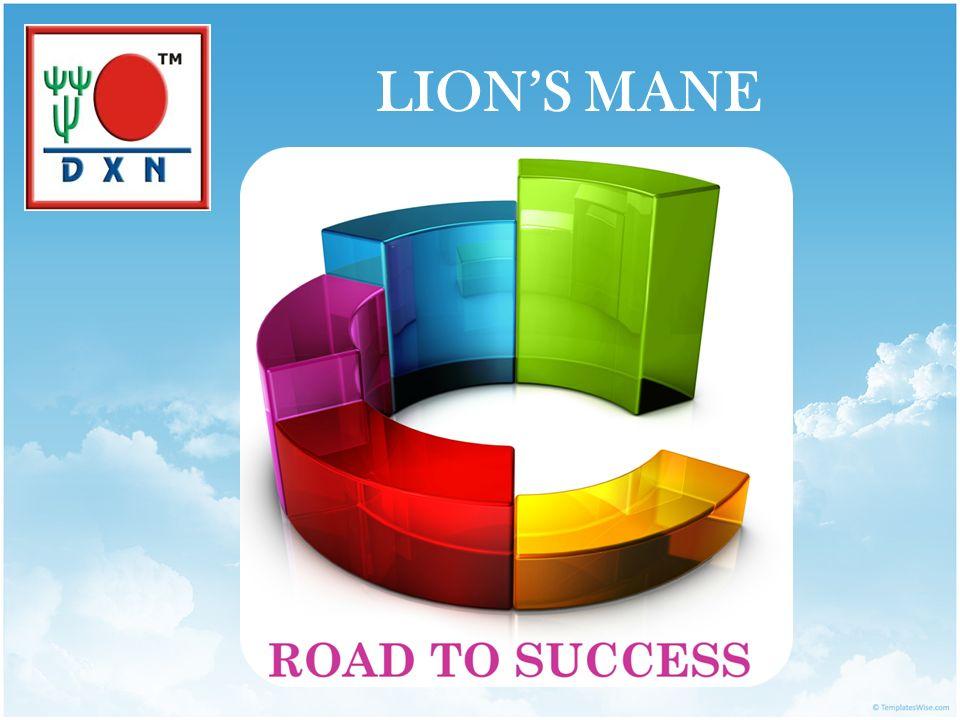 LION'S MANE