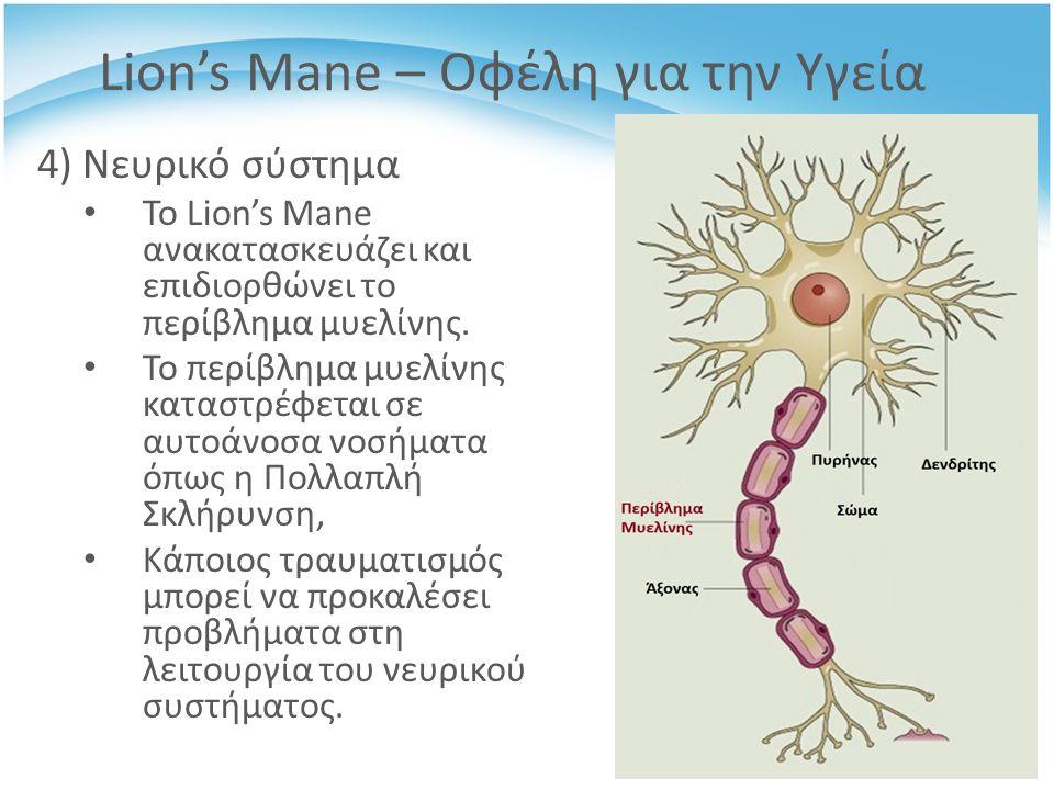 4) Νευρικό σύστημα Το Lion's Mane ανακατασκευάζει και επιδιορθώνει το περίβλημα μυελίνης.