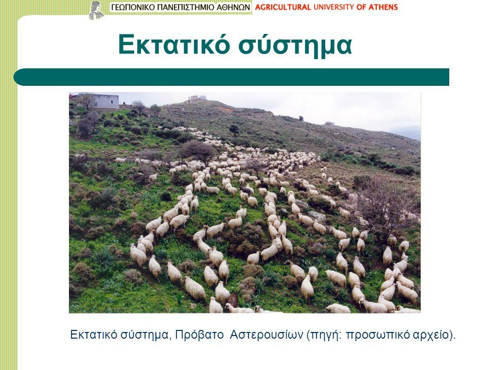 Εκτατικό σύστημα Εκτατικό σύστημα, Πρόβατο Αστερουσίων (πηγή: προσωπικό αρχείο).