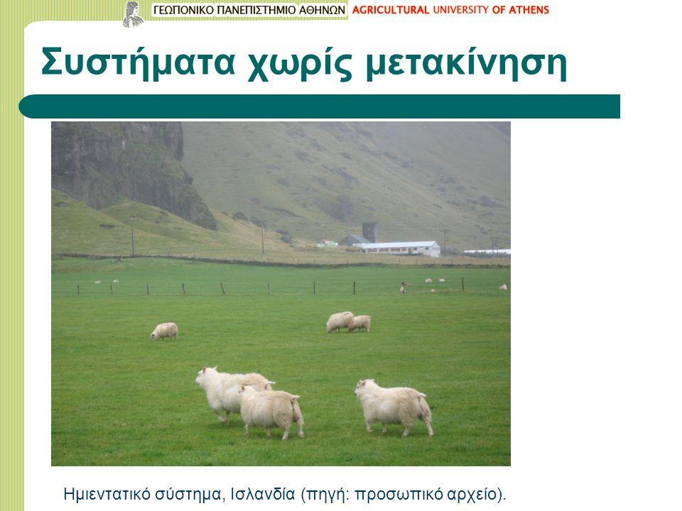 Συστήματα χωρίς μετακίνηση Ημιεντατικό σύστημα, Ισλανδία (πηγή: προσωπικό αρχείο).
