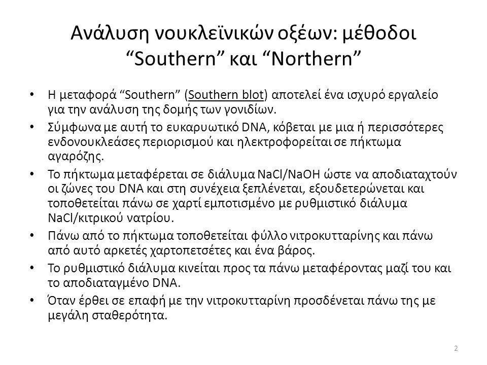 Ανάλυση νουκλεϊνικών οξέων: μέθοδοι Southern και Northern Η μεταφορά Southern (Southern blot) αποτελεί ένα ισχυρό εργαλείο για την ανάλυση της δομής των γονιδίων.