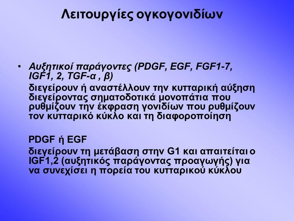 Αυξητικοί παράγοντες (PDGF, EGF, FGF1-7, IGF1, 2, TGF-α, β) διεγείρουν ή αναστέλλουν την κυτταρική αύξηση διεγείροντας σηματοδοτικά μονοπάτια που ρυθμίζουν την έκφραση γονιδίων που ρυθμίζουν τον κυτταρικό κύκλο και τη διαφοροποίηση PDGF ή EGF διεγείρουν τη μετάβαση στην G1 και απαιτείται ο IGF1,2 (αυξητικός παράγοντας προαγωγής) για να συνεχίσει η πορεία του κυτταρικού κύκλου Λειτουργίες ογκογονιδίων