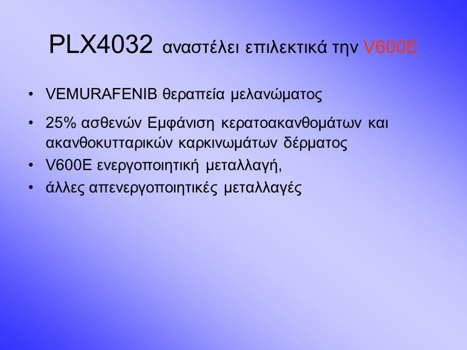 PLX4032 αναστέλει επιλεκτικά την V600E VEMURAFENIB θεραπεία μελανώματος 25% ασθενών Εμφάνιση κερατοακανθομάτων και ακανθοκυτταρικών καρκινωμάτων δέρματος V600E ενεργοποιητική μεταλλαγή, άλλες απενεργοποιητικές μεταλλαγές