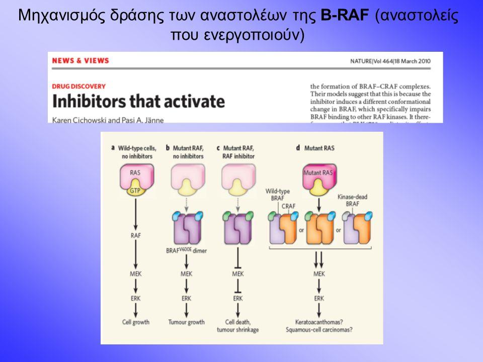 Μηχανισμός δράσης των αναστολέων της B-RAF (αναστολείς που ενεργοποιούν)