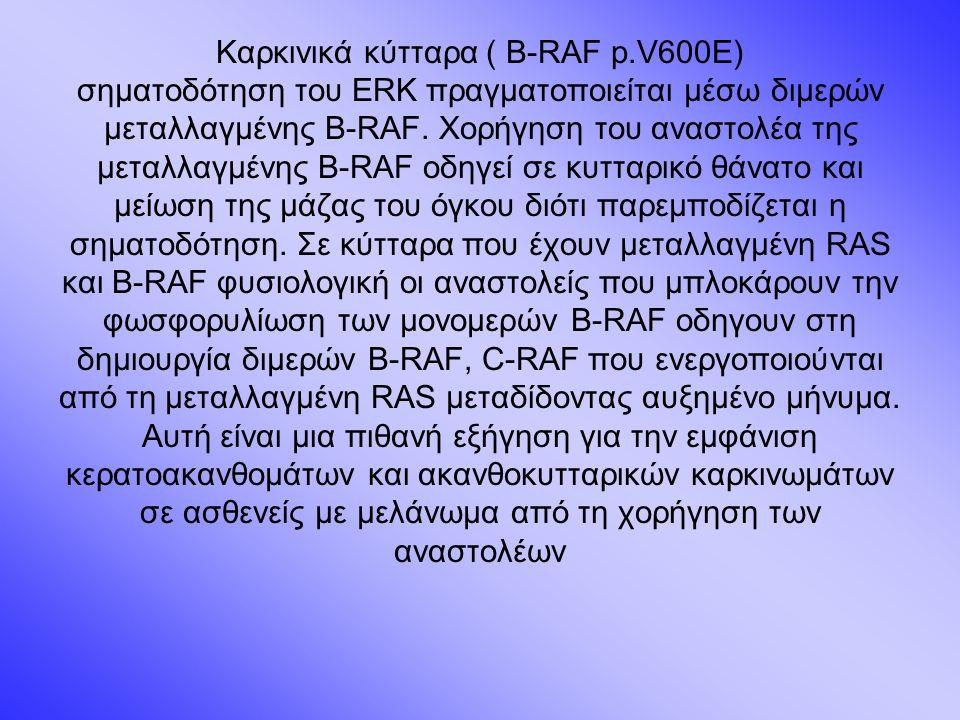 Καρκινικά κύτταρα ( B-RAF p.V600E) σηματοδότηση του ERK πραγματοποιείται μέσω διμερών μεταλλαγμένης B-RAF.