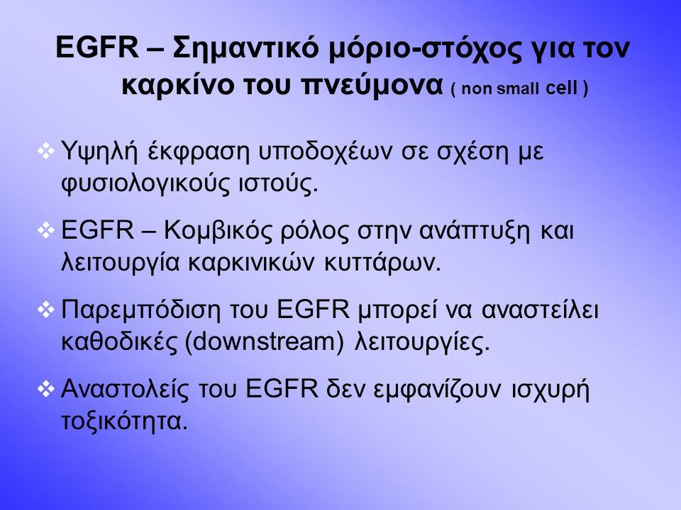EGFR – Σημαντικό μόριο-στόχος για τον καρκίνο του πνεύμονα ( non small cell )  Υψηλή έκφραση υποδοχέων σε σχέση με φυσιολογικούς ιστούς.