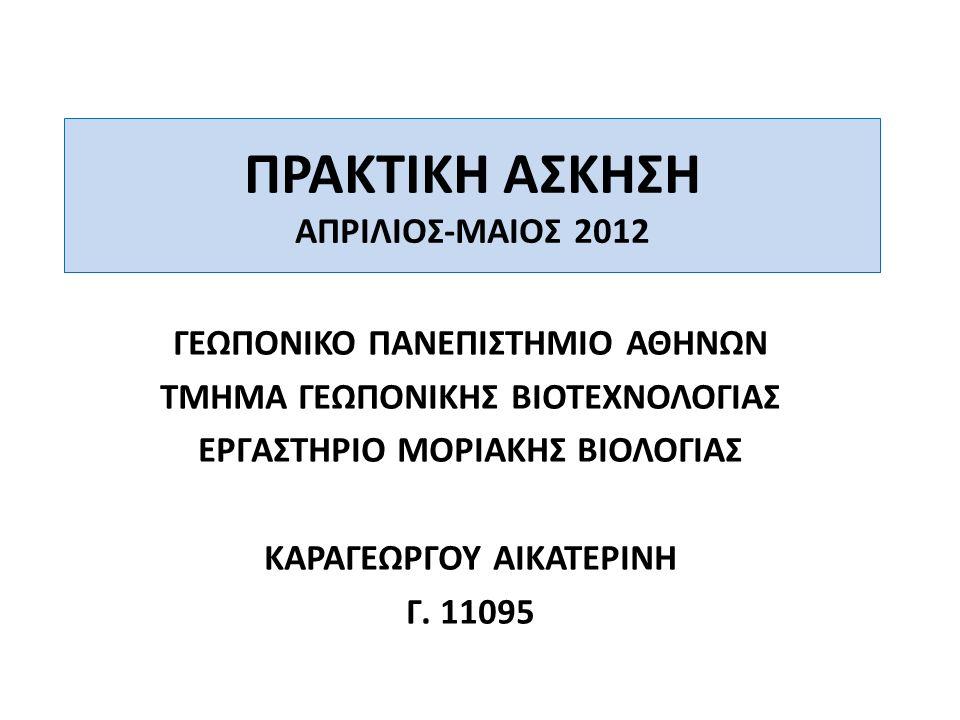 ΠρωτεΐνηΣχετική ΚινητικότηταΜοριακό Βάρος (kDa) α (πράσινο χρώμα) 0.7722.813 β (κίτρινο χρώμα) 0.635.048 γ (κόκκινο χρώμα) 0.544.978 δ (ροζ χρώμα) 0.457.722 ε (μπλε χρώμα) 0.3467.042 στ (πορτοκαλί χρώμα) 0.2975.776