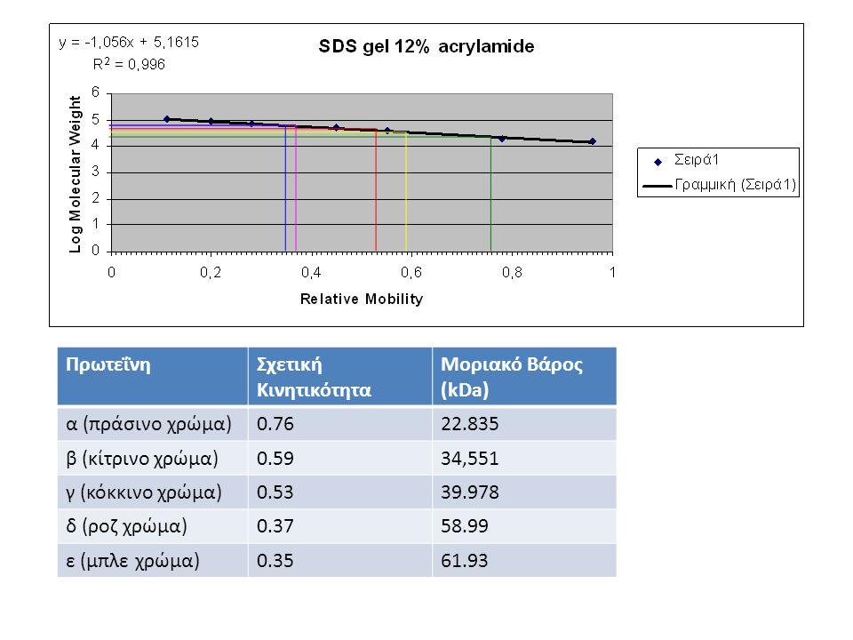 ΠρωτεΐνηΣχετική Κινητικότητα Μοριακό Βάρος (kDa) α (πράσινο χρώμα)0.7622.835 β (κίτρινο χρώμα)0.5934,551 γ (κόκκινο χρώμα)0.5339.978 δ (ροζ χρώμα)0.37