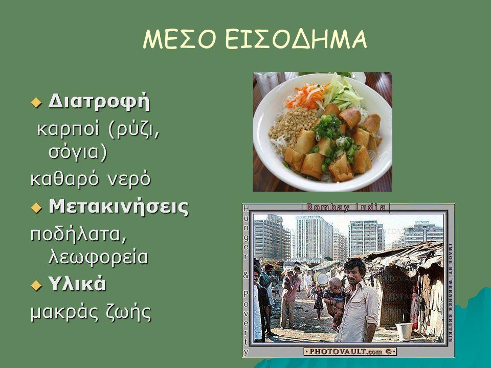 ΜΕΣΟ ΕΙΣΟΔΗΜΑ  Διατροφή καρποί (ρύζι, σόγια) καρποί (ρύζι, σόγια) καθαρό νερό  Μετακινήσεις ποδήλατα, λεωφορεία  Υλικά μακράς ζωής