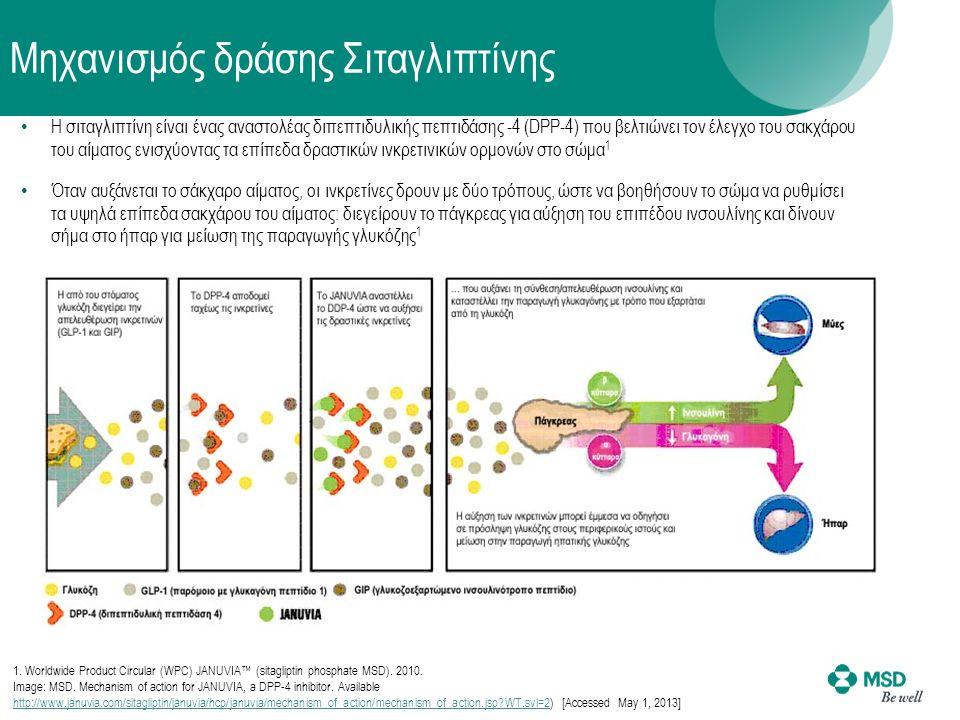 Η σιταγλιπτίνη είναι ένας αναστολέας διπεπτιδυλικής πεπτιδάσης -4 (DPP-4) που βελτιώνει τον έλεγχο του σακχάρου του αίματος ενισχύοντας τα επίπεδα δραστικών ινκρετινικών ορμονών στο σώμα 1 Όταν αυξάνεται το σάκχαρο αίματος, οι ινκρετίνες δρουν με δύο τρόπους, ώστε να βοηθήσουν το σώμα να ρυθμίσει τα υψηλά επίπεδα σακχάρου του αίματος: διεγείρουν το πάγκρεας για αύξηση του επιπέδου ινσουλίνης και δίνουν σήμα στο ήπαρ για μείωση της παραγωγής γλυκόζης 1 Μηχανισμός δράσης Σιταγλιπτίνης 1.