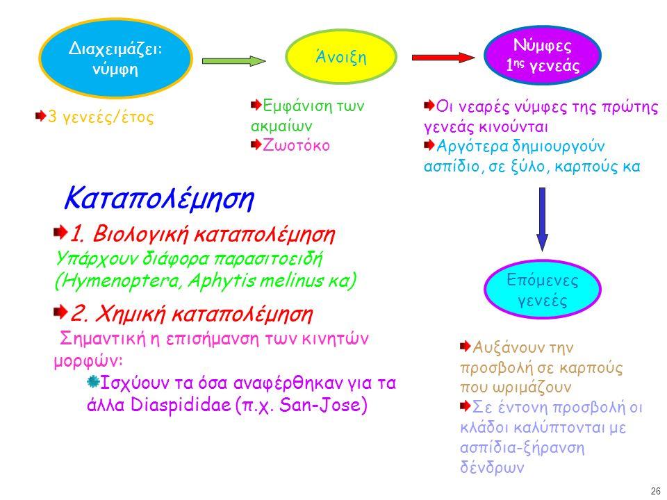 Διαχειμάζει: νύμφη Άνοιξη 3 γενεές/έτος Εμφάνιση των ακμαίων Ζωοτόκο Νύμφες 1 ης γενεάς Οι νεαρές νύμφες της πρώτης γενεάς κινούνται Αργότερα δημιουργούν ασπίδιο, σε ξύλο, καρπούς κα Επόμενες γενεές Αυξάνουν την προσβολή σε καρπούς που ωριμάζουν Σε έντονη προσβολή οι κλάδοι καλύπτονται με ασπίδια-ξήρανση δένδρων Καταπολέμηση 1.