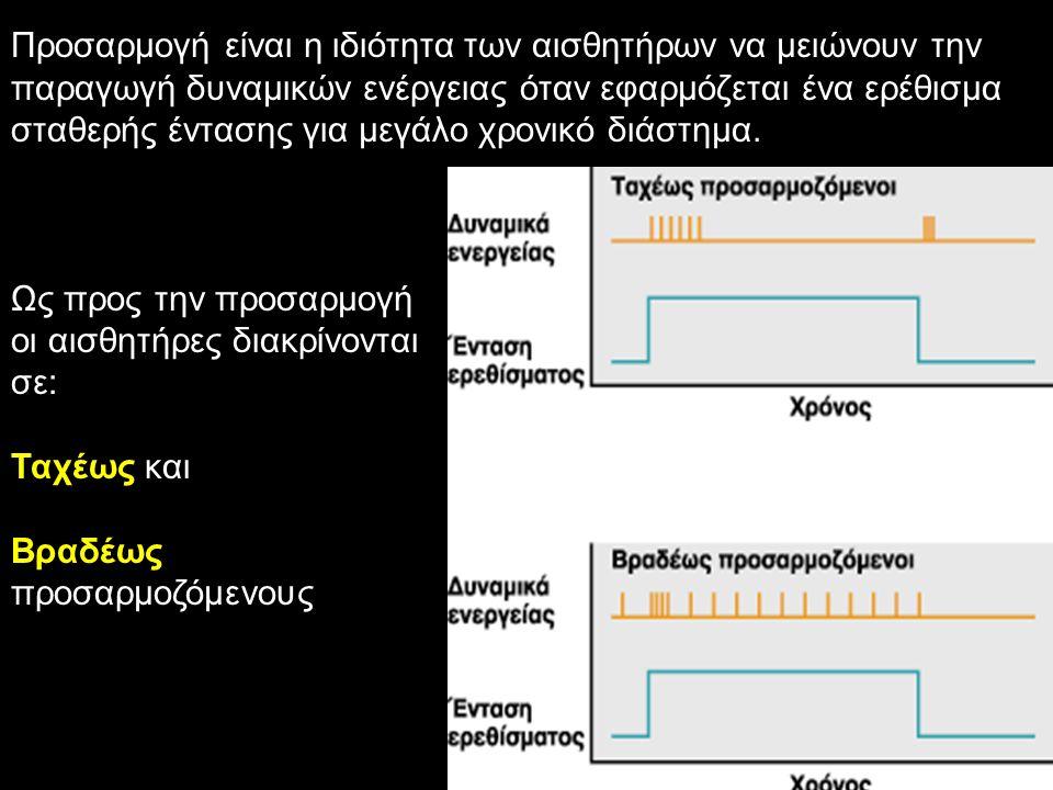 Προσαρμογή είναι η ιδιότητα των αισθητήρων να μειώνουν την παραγωγή δυναμικών ενέργειας όταν εφαρμόζεται ένα ερέθισμα σταθερής έντασης για μεγάλο χρον