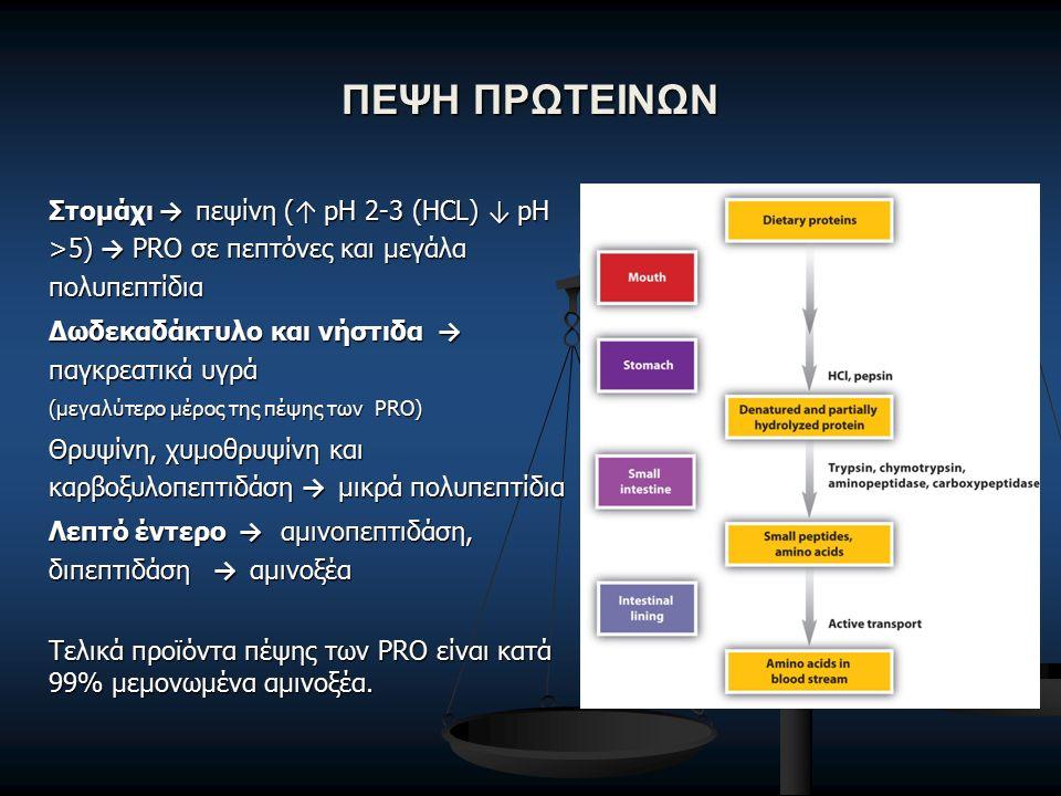 ΠΕΨΗ ΠΡΩΤΕΙΝΩΝ Στομάχι → πεψίνη ( ↑ pH 2-3 (HCL) ↓ pH >5) → PRO σε πεπτόνες και μεγάλα πολυπεπτίδια Δωδεκαδάκτυλο και νήστιδα → παγκρεατικά υγρά (μεγαλύτερο μέρος της πέψης των PRO) Θρυψίνη, χυμοθρυψίνη και καρβοξυλοπεπτιδάση → μικρά πολυπεπτίδια Λεπτό έντερο → αμινοπεπτιδάση, διπεπτιδάση → αμινοξέα Τελικά προϊόντα πέψης των PRO είναι κατά 99% μεμονωμένα αμινοξέα.