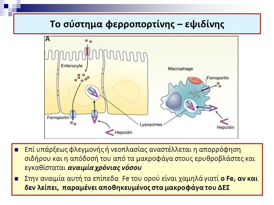 Το σύστημα φερροπορτίνης – εψιδίνης Επί υπάρξεως φλεγμονής ή νεοπλασίας αναστέλλεται η απορρόφηση σιδήρου και η απόδοσή του από τα μακροφάγα στους ερυθροβλάστες και εγκαθίσταται αναιμία χρόνιας νόσου Στην αναιμία αυτή τα επίπεδα Fe του ορού είναι χαμηλά γιατί ο Fe, αν και δεν λείπει, παραμένει αποθηκευμένος στα μακροφάγα του ΔΕΣ