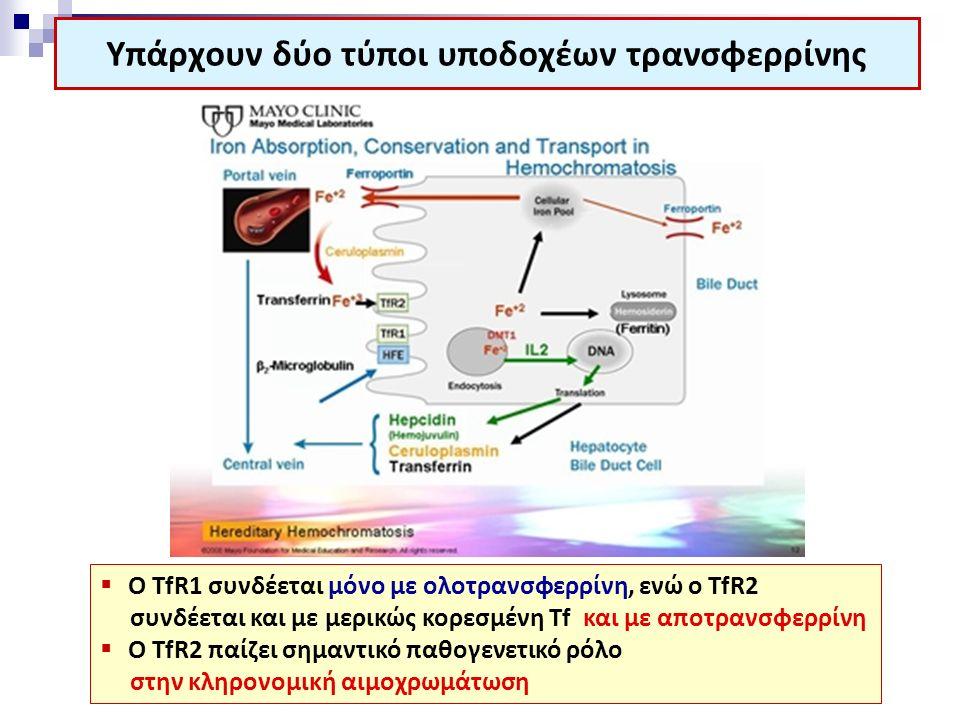 Υπάρχουν δύο τύποι υποδοχέων τρανσφερρίνης  O TfR1 συνδέεται μόνο με ολοτρανσφερρίνη, ενώ ο TfR2 συνδέεται και με μερικώς κορεσμένη Tf και με αποτραν