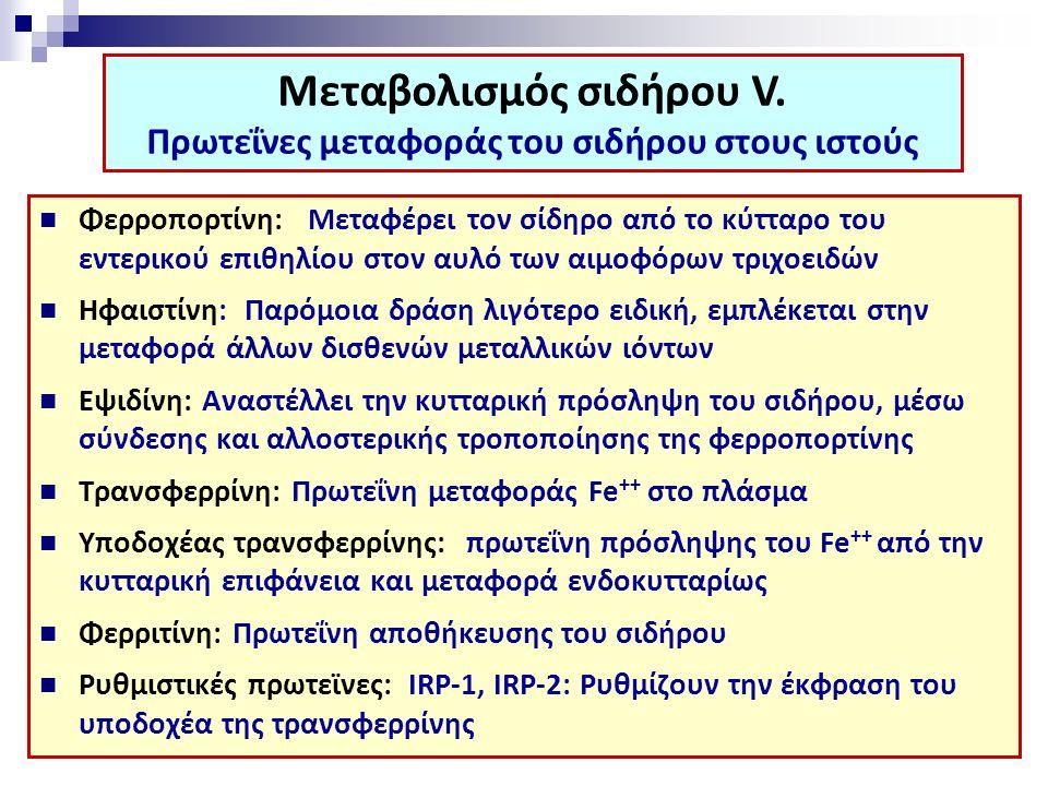 Φερροπορτίνη: Μεταφέρει τον σίδηρο από το κύτταρο του εντερικού επιθηλίου στον αυλό των αιμοφόρων τριχοειδών Ηφαιστίνη: Παρόμοια δράση λιγότερο ειδική, εμπλέκεται στην μεταφορά άλλων δισθενών μεταλλικών ιόντων Εψιδίνη: Αναστέλλει την κυτταρική πρόσληψη του σιδήρου, μέσω σύνδεσης και αλλοστερικής τροποποίησης της φερροπορτίνης Τρανσφερρίνη: Πρωτεΐνη μεταφοράς Fe ++ στο πλάσμα Υποδοχέας τρανσφερρίνης: πρωτεΐνη πρόσληψης του Fe ++ από την κυτταρική επιφάνεια και μεταφορά ενδοκυτταρίως Φερριτίνη: Πρωτεΐνη αποθήκευσης του σιδήρου Ρυθμιστικές πρωτεϊνες: IRP-1, IRP-2: Ρυθμίζουν την έκφραση του υποδοχέα της τρανσφερρίνης Μεταβολισμός σιδήρου V.