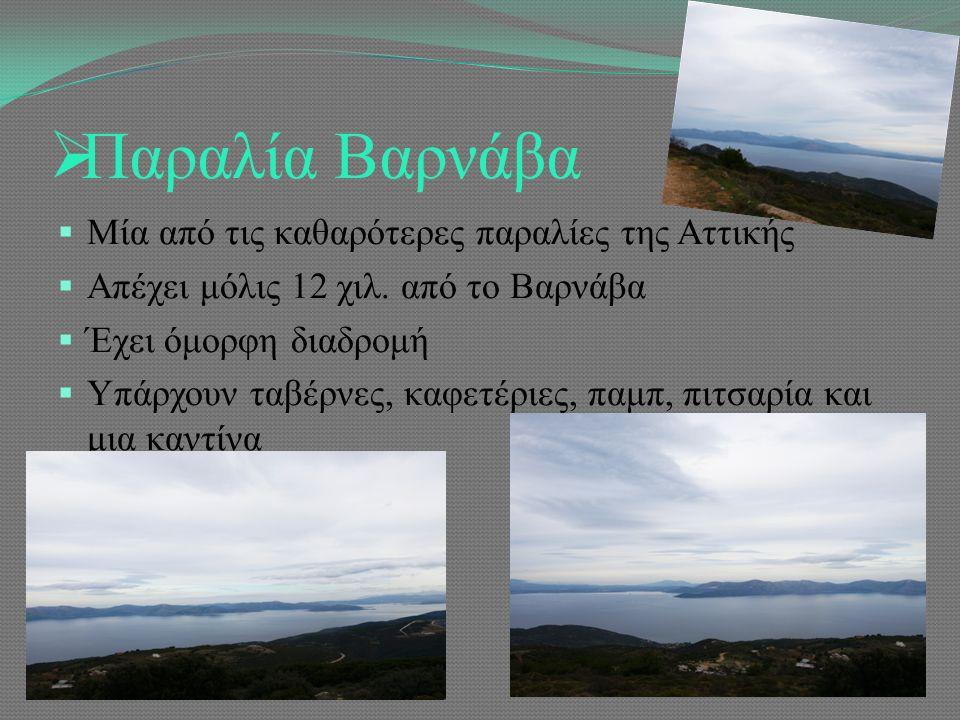  Παραλία Βαρνάβα  Μία από τις καθαρότερες παραλίες της Αττικής  Απέχει μόλις 12 χιλ.