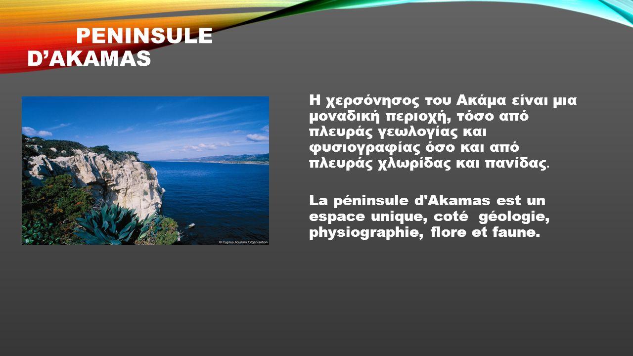 Η Κύπρος είναι το τρίτο σε μέγεθος νησί της Μεσογείου, μετά τη Σαρδηνία και τη Σικελία.