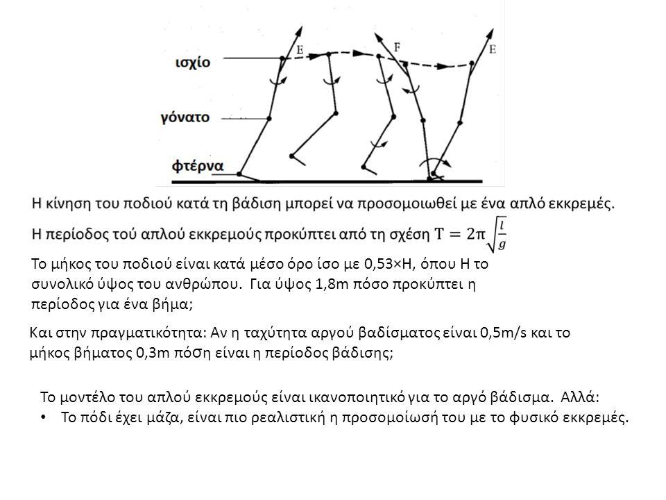 Το μήκος του ποδιού είναι κατά μέσο όρο ίσο με 0,53×Η, όπου Η το συνολικό ύψος του ανθρώπου.