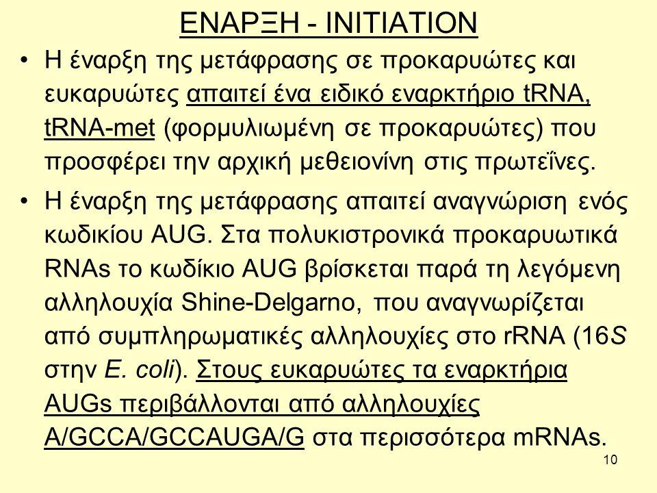 10 ΕΝΑΡΞΗ - INITIATION Η έναρξη της μετάφρασης σε προκαρυώτες και ευκαρυώτες απαιτεί ένα ειδικό εναρκτήριο tRNA, tRNA-met (φορμυλιωμένη σε προκαρυώτες) που προσφέρει την αρχική μεθειονίνη στις πρωτεΐνες.