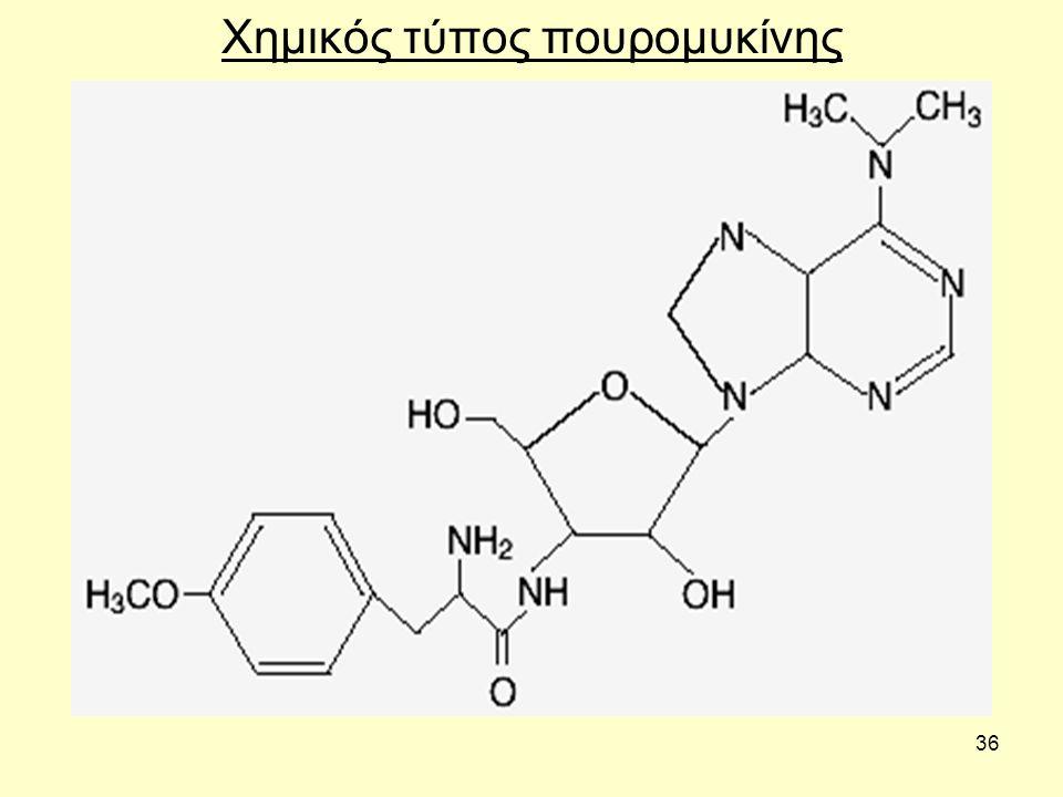36 Χημικός τύπος πουρομυκίνης