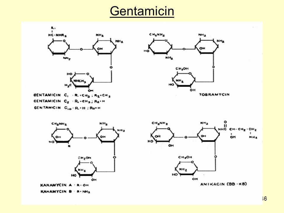 46 Gentamicin