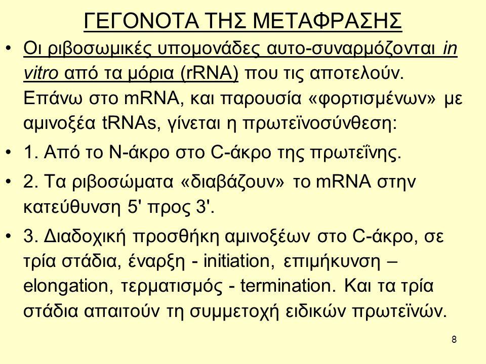 8 ΓΕΓΟΝΟΤΑ ΤΗΣ ΜΕΤΑΦΡΑΣΗΣ Οι ριβοσωμικές υπομονάδες αυτο-συναρμόζονται in vitro από τα μόρια (rRNA) που τις αποτελούν.