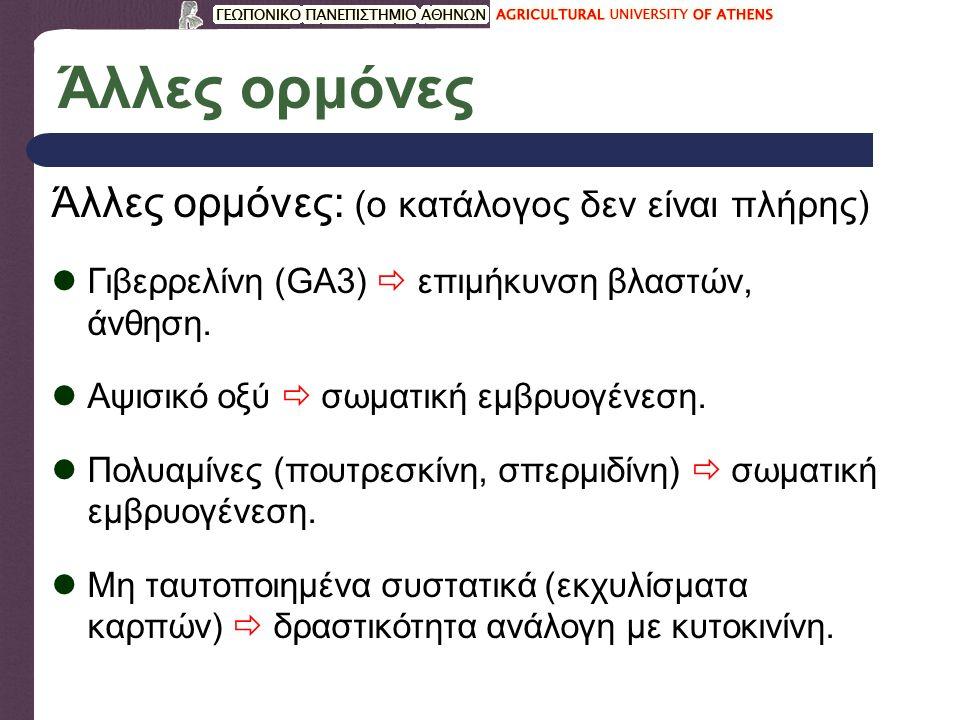 Άλλες ορμόνες Άλλες ορμόνες: (ο κατάλογος δεν είναι πλήρης) Γιβερρελίνη (GA3)  επιμήκυνση βλαστών, άνθηση.