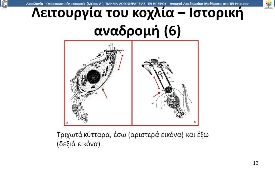 1313 Ακοολογία - Ωτοακουστικές εκπομπές (Μέρος Α'), ΤΜΗΜΑ ΛΟΓΟΘΕΡΑΠΕΙΑΣ, ΤΕΙ ΗΠΕΙΡΟΥ - Ανοιχτά Ακαδημαϊκά Μαθήματα στο ΤΕΙ Ηπείρου Τριχωτά κύτταρα, έσω (αριστερά εικόνα) και έξω (δεξιά εικόνα) 13 Λειτουργία του κοχλία – Ιστορική αναδρομή (6)