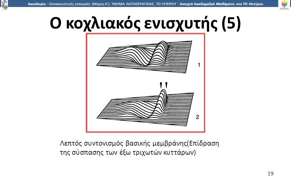 1919 Ακοολογία - Ωτοακουστικές εκπομπές (Μέρος Α'), ΤΜΗΜΑ ΛΟΓΟΘΕΡΑΠΕΙΑΣ, ΤΕΙ ΗΠΕΙΡΟΥ - Ανοιχτά Ακαδημαϊκά Μαθήματα στο ΤΕΙ Ηπείρου Λεπτός συντονισμός βασικής μεμβράνης(Επίδραση της σύσπασης των έξω τριχωτών κυττάρων) 19 Ο κοχλιακός ενισχυτής (5)