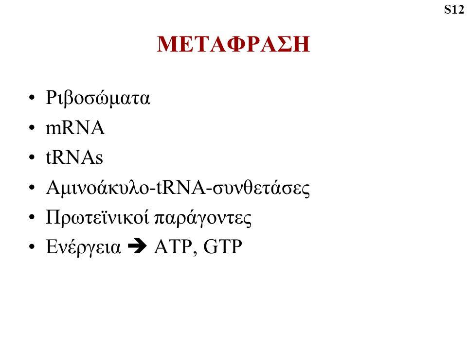 ΜΕΤΑΦΡΑΣΗ Ριβοσώματα mRNA tRNAs Αμινοάκυλο-tRNA-συνθετάσες Πρωτεϊνικοί παράγοντες Ενέργεια  ATP, GTP S12
