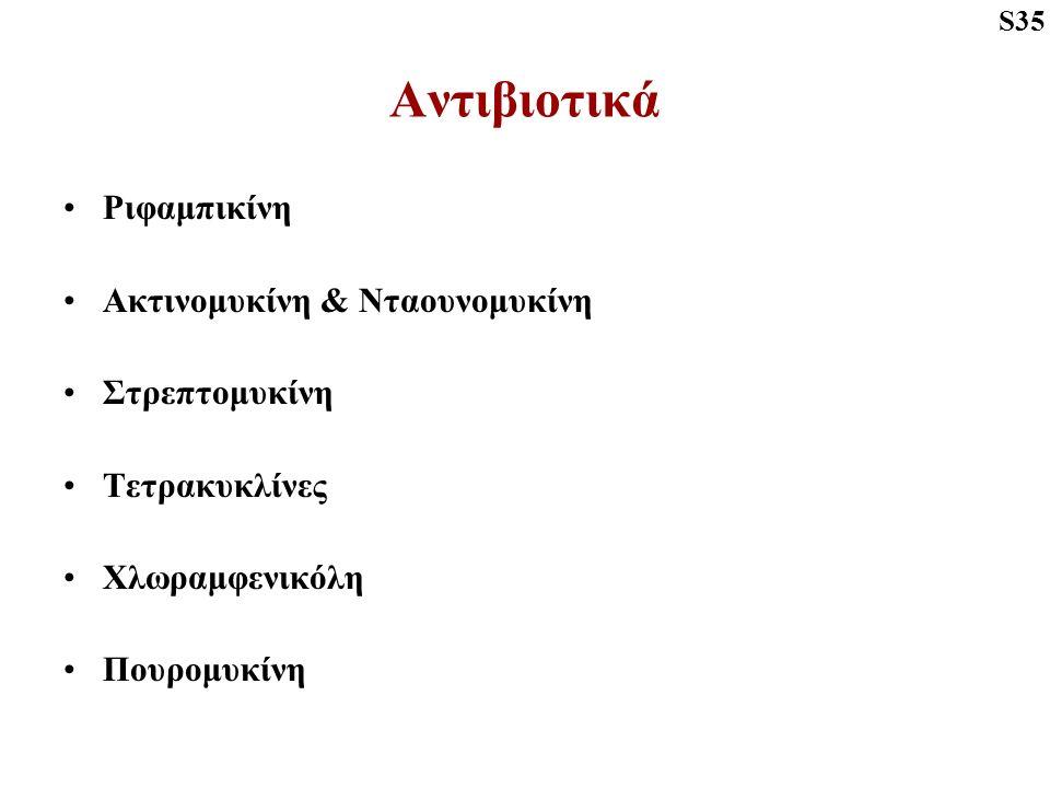 Αντιβιοτικά Ριφαμπικίνη Ακτινομυκίνη & Νταουνομυκίνη Στρεπτομυκίνη Τετρακυκλίνες Χλωραμφενικόλη Πουρομυκίνη S35