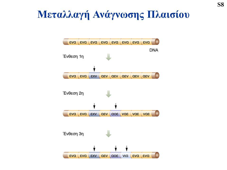 Μεταλλαγή Ανάγνωσης Πλαισίου S8