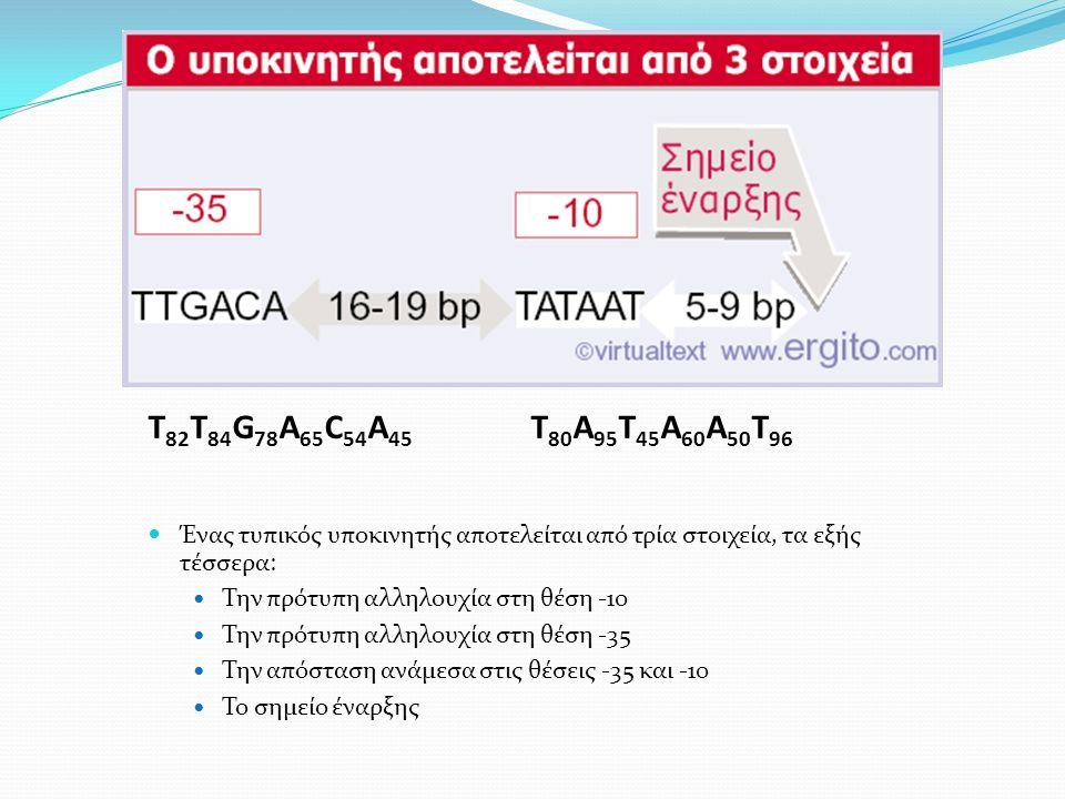 T 82 T 84 G 78 A 65 C 54 A 45 T 80 A 95 T 45 A 60 A 50 T 96 Ένας τυπικός υποκινητής αποτελείται από τρία στοιχεία, τα εξής τέσσερα: Την πρότυπη αλληλουχία στη θέση -10 Την πρότυπη αλληλουχία στη θέση -35 Την απόσταση ανάμεσα στις θέσεις -35 και -10 Το σημείο έναρξης