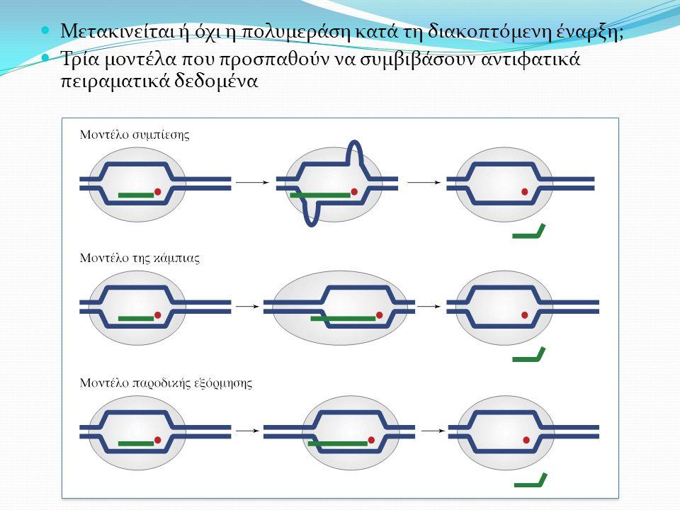 Μετακινείται ή όχι η πολυμεράση κατά τη διακοπτόμενη έναρξη; Τρία μοντέλα που προσπαθούν να συμβιβάσουν αντιφατικά πειραματικά δεδομένα