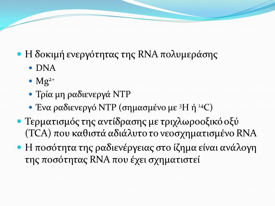 Η δοκιμή ενεργότητας της RNA πολυμεράσης DNA Mg 2+ Τρία μη ραδιενεργά ΝΤΡ Ένα ραδιενεργό ΝΤΡ (σημασμένο με 3 Η ή 14 C) Τερματισμός της αντίδρασης με τριχλωροοξικό οξύ (TCA) που καθιστά αδιάλυτο το νεοσχηματισμένο RNA Η ποσότητα της ραδιενέργειας στο ίζημα είναι ανάλογη της ποσότητας RNA που έχει σχηματιστεί