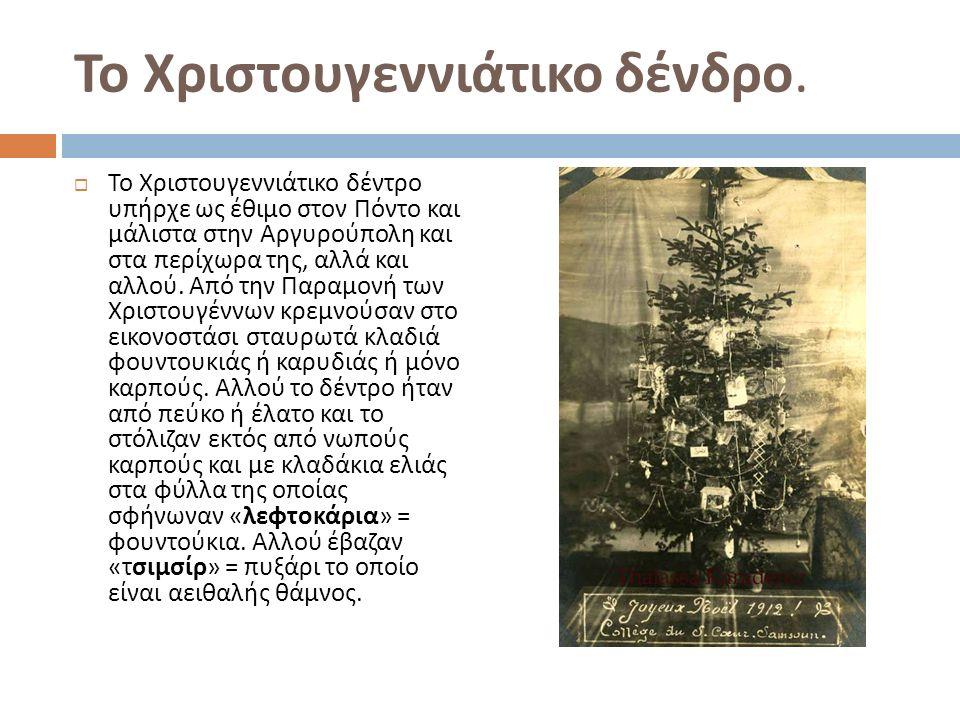 Το Χριστουγεννιάτικο δένδρο.