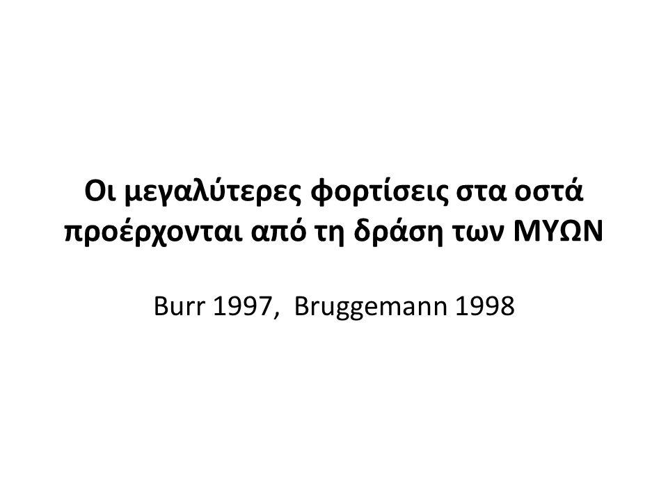 Οι μεγαλύτερες φορτίσεις στα οστά προέρχονται από τη δράση των ΜΥΩΝ Burr 1997, Bruggemann 1998