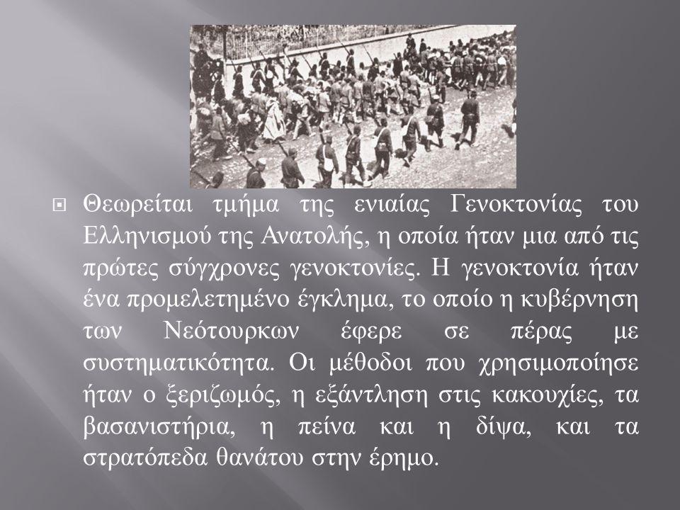  Θεωρείται τμήμα της ενιαίας Γενοκτονίας του Ελληνισμού της Ανατολής, η οποία ήταν μια από τις πρώτες σύγχρονες γενοκτονίες. Η γενοκτονία ήταν ένα πρ