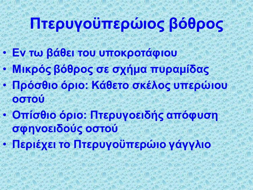 Εν τω βάθει του υποκροτάφιου Μικρός βόθρος σε σχήμα πυραμίδας Πρόσθιο όριο: Κάθετο σκέλος υπερώιου οστού Οπίσθιο όριο: Πτερυγοειδής απόφυση σφηνοειδούς οστού Περιέχει το Πτερυγοϋπερώιο γάγγλιο Πτερυγοϋπερώιος βόθρος