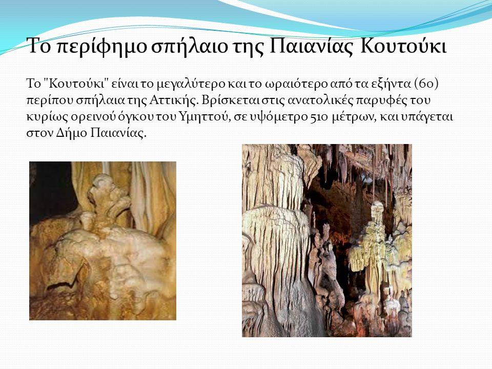 Πρώτος εξερευνητής του Σπηλαίου θεωρείται ο δημοσιογράφος Δ.
